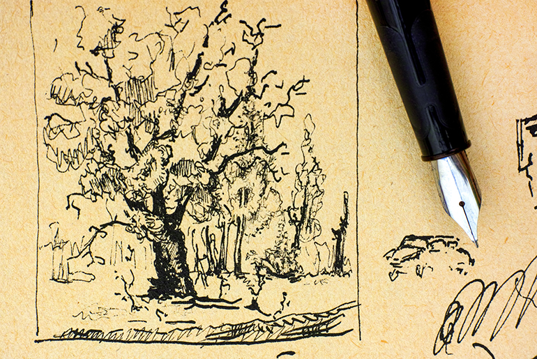 ink pen and pen and ink drawing of a tree