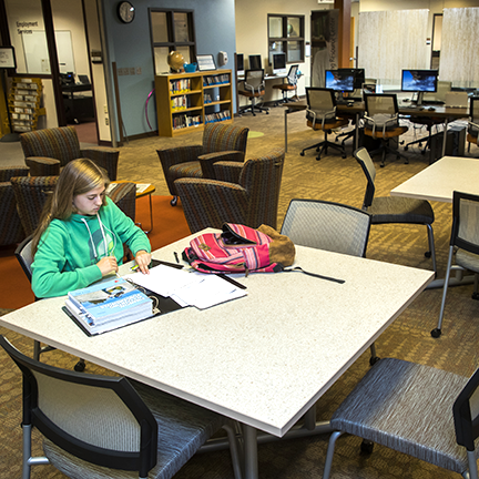 Student studying in LRC
