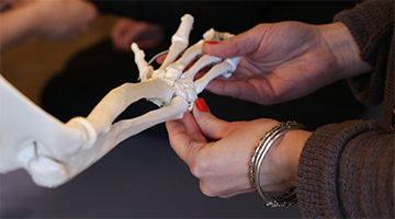 An instructor pointing to the hand of a demonstration skeleton