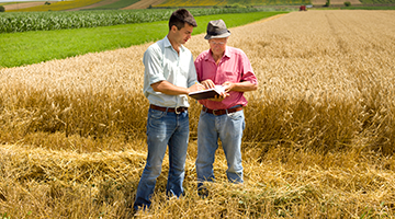 Two farmers out in a field looking at a clipboard